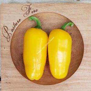 Numex Lemon Spice Chilli